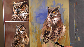 CC106 Great Horned Owl
