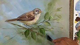 CC101 Painting the Vireo